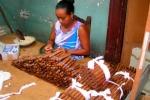Bí mật cigar Cuba qua con mắt người 'trong cuộc' - Kỳ III: Vào thủ phủ cigar nhái