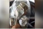 Tài xế vo tròn tiền lẻ trong chai nhựa phản đối trạm thu phí ở Tiền Giang