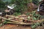 Cuồng phong 'tấn công' Lào Cai, 5 người thương vong