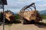 Xe ủi nặng 30 tấn, tang vật của lâm tặc không cánh mà bay