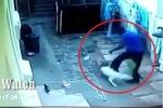 Trộm trèo tường vào nhà bị 2 chú chó xâu xé, kéo... tụt quần