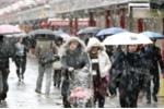 Nhật Bản: Tuyết rơi trong mùa thu, hiếm gặp trong 54 năm nay