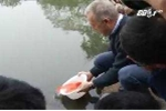 Đại sứ Mỹ thả cá, đi chợ hoa sắm Tết, chúc Tết bằng tiếng Việt