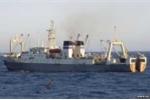 Chìm tàu cá Nga, 54 người thiệt mạng, 15 người mất tích