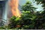 'Bà hỏa' thiêu rụi căn nhà tại trung tâm TP. HCM