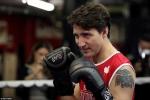 Thủ tướng Canada điển trai, đấm bốc chuyên nghiệp