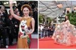 Sự thật bất ngờ về vai trò của Angela Phương Trinh tại Cannes