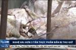 Rùng mình cảnh thu giữ hơn 3 tấn thực phẩm bẩn, bốc mùi hôi thối ở Nghệ An