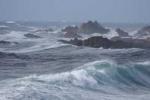 Áp thấp nhiệt đới mạnh lên thành bão số 1, biển động dữ dội