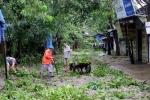 Ảnh: Nghệ An, Hà Tĩnh tan hoang sau bão số 2