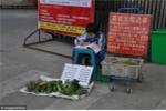 Bị bỏ rơi, bé gái 8 tuổi đi bán rau tìm cha mẹ