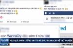 Tải mã độc Wannacry về thử, người dùng lĩnh trái đắng