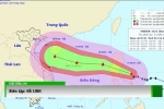 Đường đi của bão số 7 Sarika