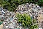 Di dời toàn bộ số rác thải có chữ Trung Quốc đổ trong rừng