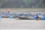 Xả lũ trước khi địa phương nhận thông báo, hộ nuôi cá ven sông thiệt hại nặng - ảnh 1