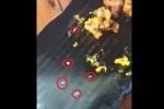 Dòi bò lổn ngổn trong đĩa sụn gà: Phạt nhà hàng 4 triệu đồng