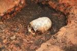 Bất ngờ phát hiện hài cốt bé trai có hộp sọ 'ngoài hành tinh'