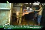 Video: Phóng viên vào vai lái buôn, vạch trần thủ đoạn bơm nước vào trâu bò dã man