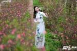 Song Ngan (16)