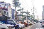 Cây xanh 'mọc' dưới lưới điện cao thế ở Hà Nội: Người dân lo lắng mất an toàn