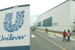 Tin 5/9: Unilever Việt Nam bị truy thu thuế, nguy cơ Habeco bị Carlsberg thâu tóm