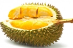 Người bị cao huyết áp cũng không nên ăn sầu riêng.