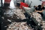 Kinh hãi cảnh mỡ lợn ôi thiu vứt ngổn ngang trên sàn cáu bẩn, ruồi nhặng bâu đầy