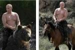 Ông Putin cưỡi gấu nằm trong danh sách ảnh ghép nổi tiếng nhất mạng xã hội