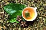 Thương mại hóa sản phẩm trà Sacha Inchi được sản xuất tại Việt Nam