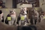 Quảng cáo hài khiến cộng đồng mạng 'phát sốt'
