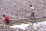 Video: Kinh hãi cảnh người dân Mù Cang Chải liều mình vớt củi trong lũ dữ