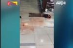 Thanh niên phê ma túy nhảy từ tầng 2 xuống đất để 'bơi cạn'