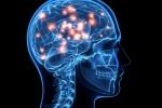 Học càng cao càng dễ bị u não?