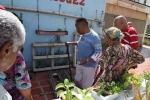 Venezuela trong khủng hoảng: Lên nóc nhà nuôi gà, trồng rau để thoát cơn đói