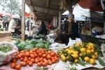 Độc đáo phiên chợ Ngái ngày Tết