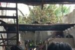 Lửa thiêu cháy 6 người trong một gia đình giữa đêm