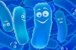Thuốc Men vi sinh sống Biolac bị thu hồi trên toàn quốc do không đạt chất lượng