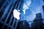 Apple đắt khách gấp đôi Samsung trong Giáng Sinh vừa qua