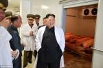 Triều Tiên tung ảnh ông Kim Jong-un tươi cười rạng rỡ thăm trang trại lợn
