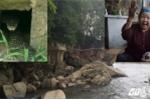 Bí ẩn rắn khổng lồ ở Quảng Ninh: Bà lão già trong ngôi miếu thờ Rắn