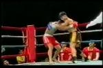 Xem Cung Lê đánh tơi tả nhà vô địch tán thủ Trung Quốc