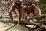 Rùng mình xem thổ dân Amazon bắt cá chình điện khổng lồ