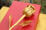 Ngày Quốc tế Phụ nữ: Xem đại gia tặng quà 'khủng'