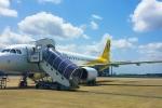 Hãng hàng không ép hành khách khuyết tật tự bò lên máy bay gây phẫn nộ