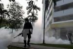 Virus Zika có nguy cơ lan rộng ở châu Á -Thái Bình Dương
