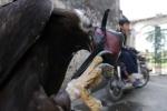 Nhà giàu Việt bỏ trăm triệu mua đại bàng vàng Mông Cổ