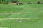 Video: Hãi hùng xem cặp rắn độc tử chiến giành bạn tình