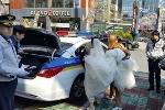 Cô dâu chú rể xin đi xe cảnh sát đến hôn lễ cho kịp giờ