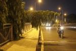 Người đàn ông gục chết trên cầu Hoàng Hoa Thám ở TP.HCM
