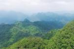 'Vườn địa đàng' nơi trần thế giữa đại ngàn Phong Nha - Kẻ Bàng